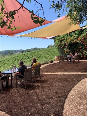 Winery Patio Experience